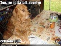loldog-funny-dog-pictures-son-we-gotta-talk-about-ur-cell-fone-billz.jpg