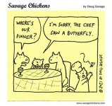 chickencatrestaurant.jpg