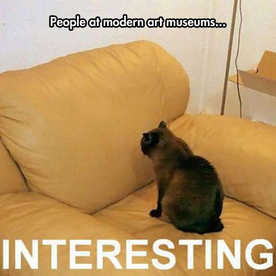 cool-cat-watching-couch-museums.jpg