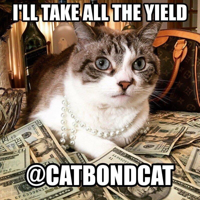 CatBondCatYield.jpg