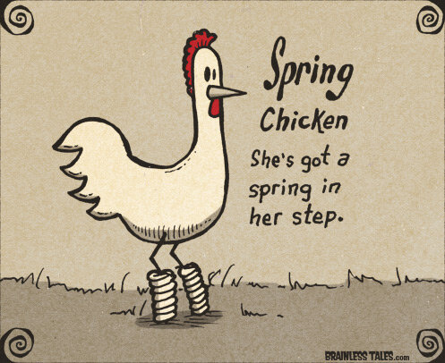 spring-chicken.jpg