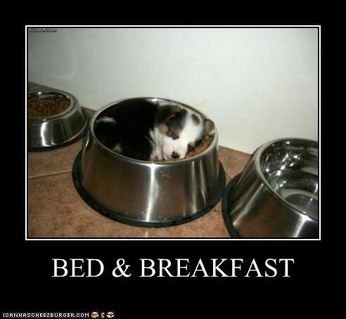 bed-and-breakfast.jpg