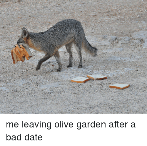ing-olive-garden-after-a-bad-date%3C-p%3E-33291595.png