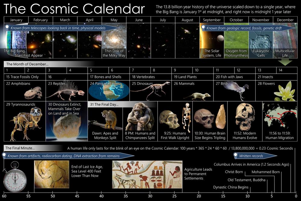1280px-Cosmic_Calendar.png