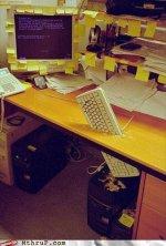job-fails-ninja-throwing-keyboard.jpg
