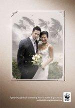 ad_wedding.jpg