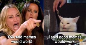 i said good memes would work.png