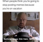 Screenshot_2020-09-06 to-stop-posting-memes-because-youre-on-vacation-no1partydad-hse-nothing-st.png