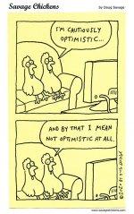 chickencautiously.jpg